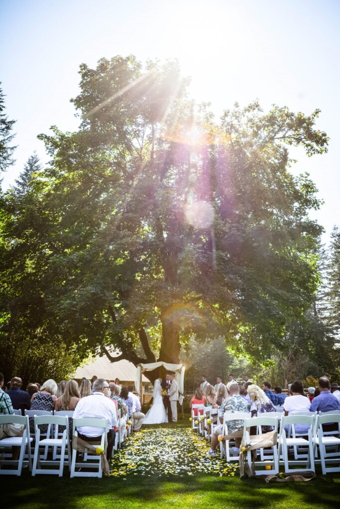 Pomeroy Weddings 37