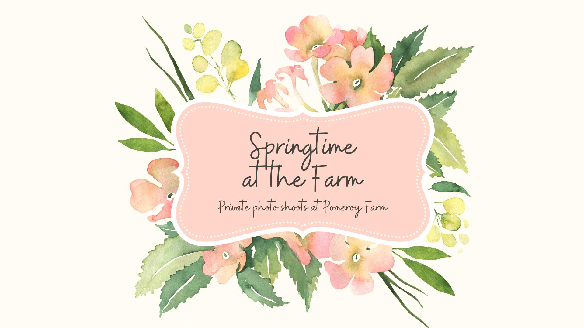 Copy of Springtime.Photos copy
